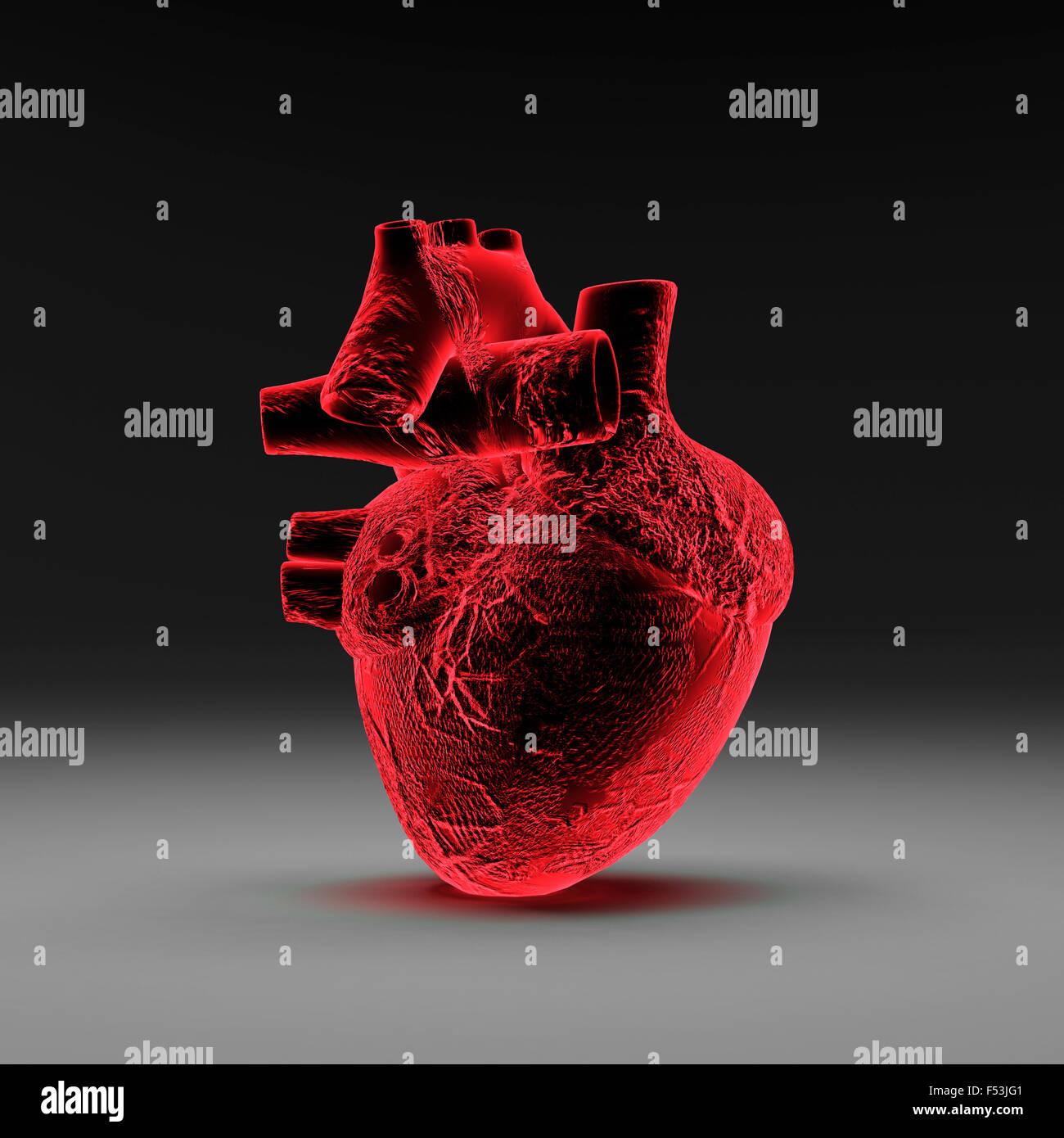 3d, CGI, [M], symbol, heart, medicine, organ, X-ray examination - Stock Image