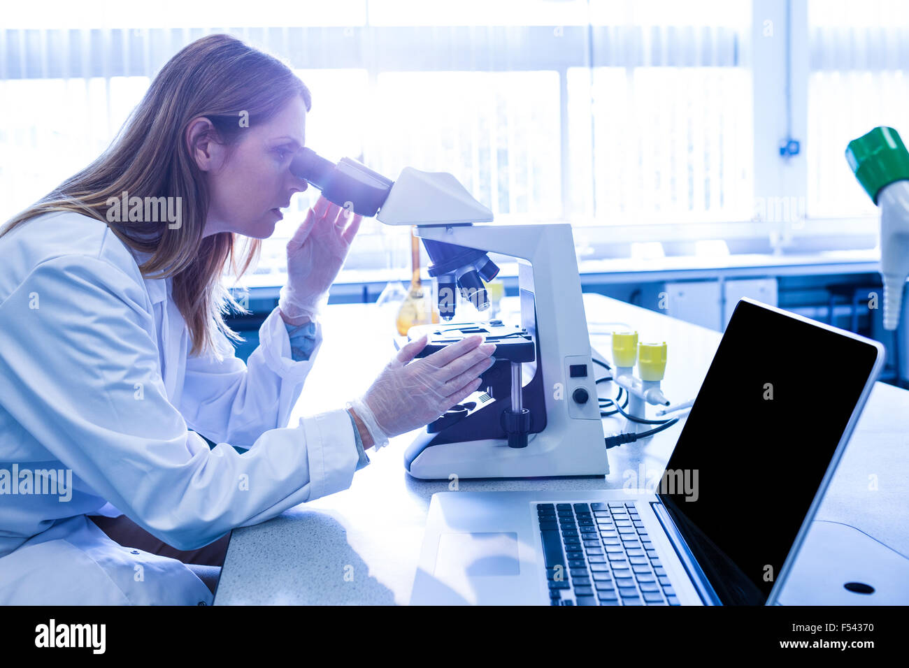 Scientist working with a microscope in laboratory - Stock Image