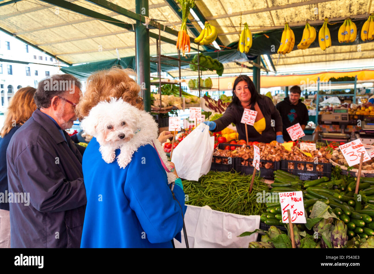 Woman with dog on her shoulder shopping for fruit and vegetables at the Erberia the vegetable part of Mercato di - Stock Image