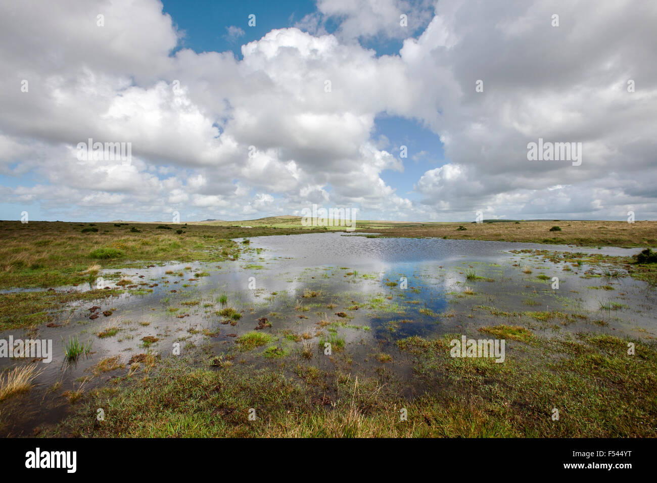moorland  puddles form shallow  pool  white clouds drifting across a soft blue sky, reflected in the surface of - Stock Image