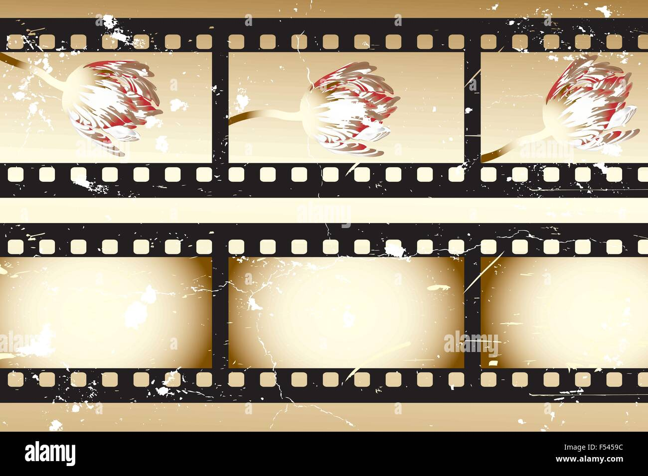 Retro movie strips with tulips and without something - Stock Vector