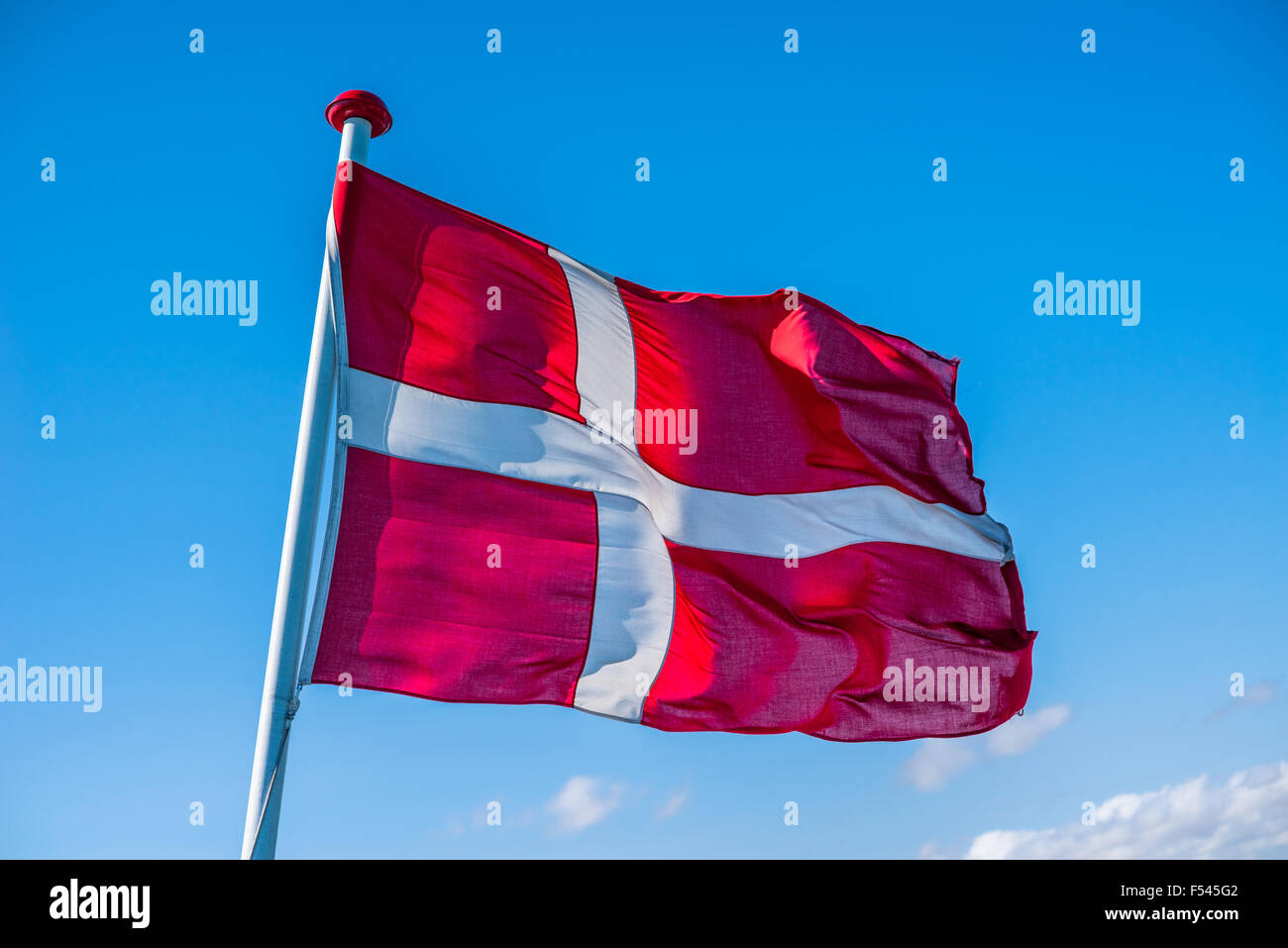 Danish flag in the wind on blue background - Stock Image