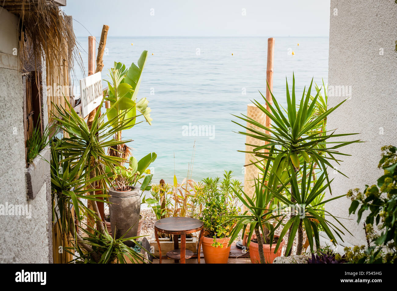 Potted plants and the Mediterranean, Eze sur Mer, Côte d' Azur, French Riviera - Stock Image