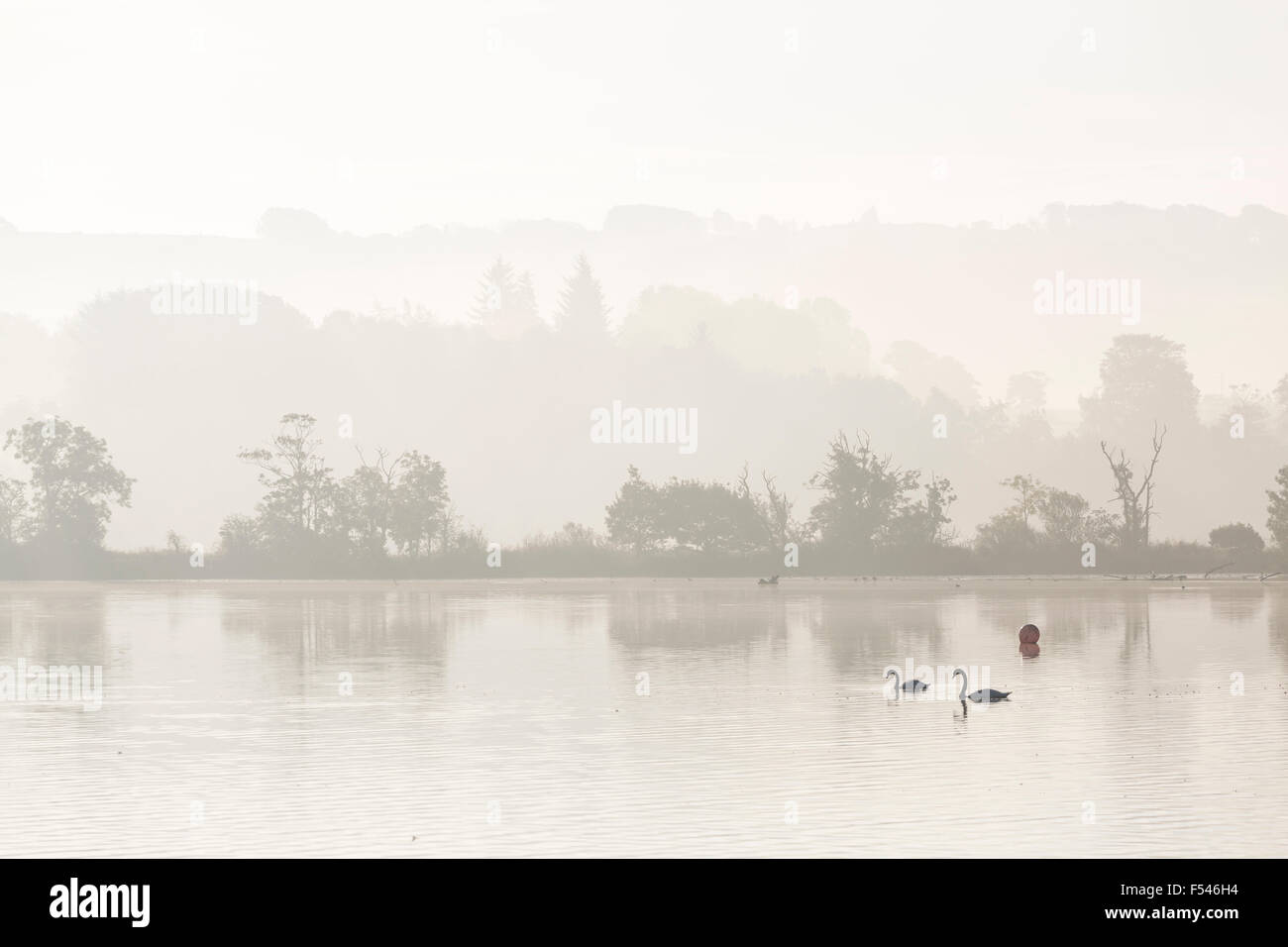 Misty sunrise over Castle Semple Loch in Renfrewshire, Scotland, UK Stock Photo