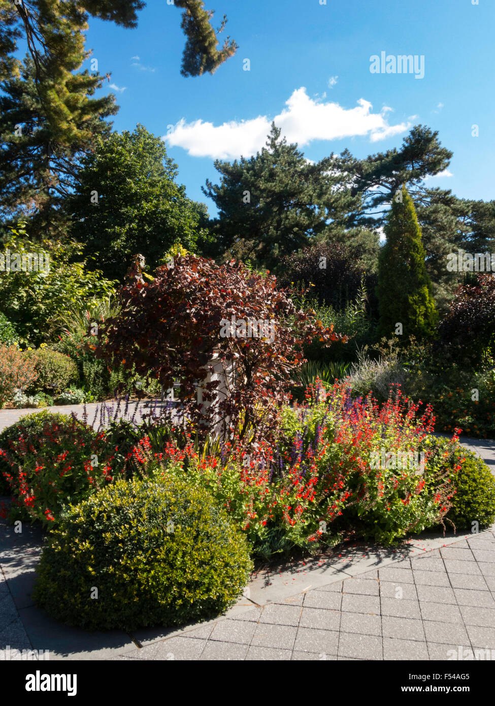 New York Botanical Garden, The Bronx, NY, USA Stock Photo: 89221221 ...