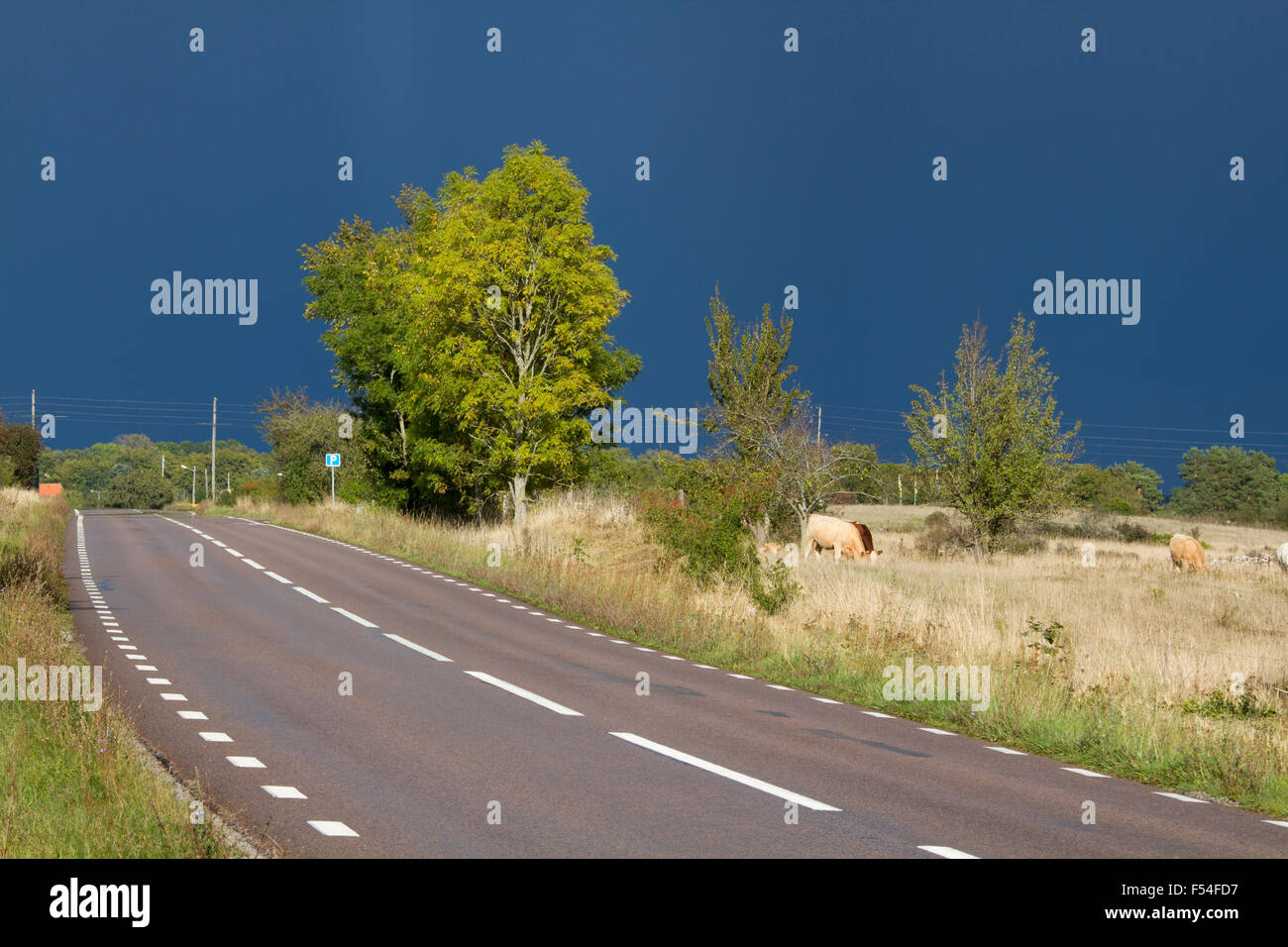 Before the rain - Stock Image