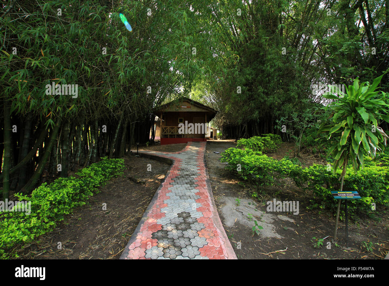 Bamboo groove Cottege in Periyar Tiger reserve Stock Photo