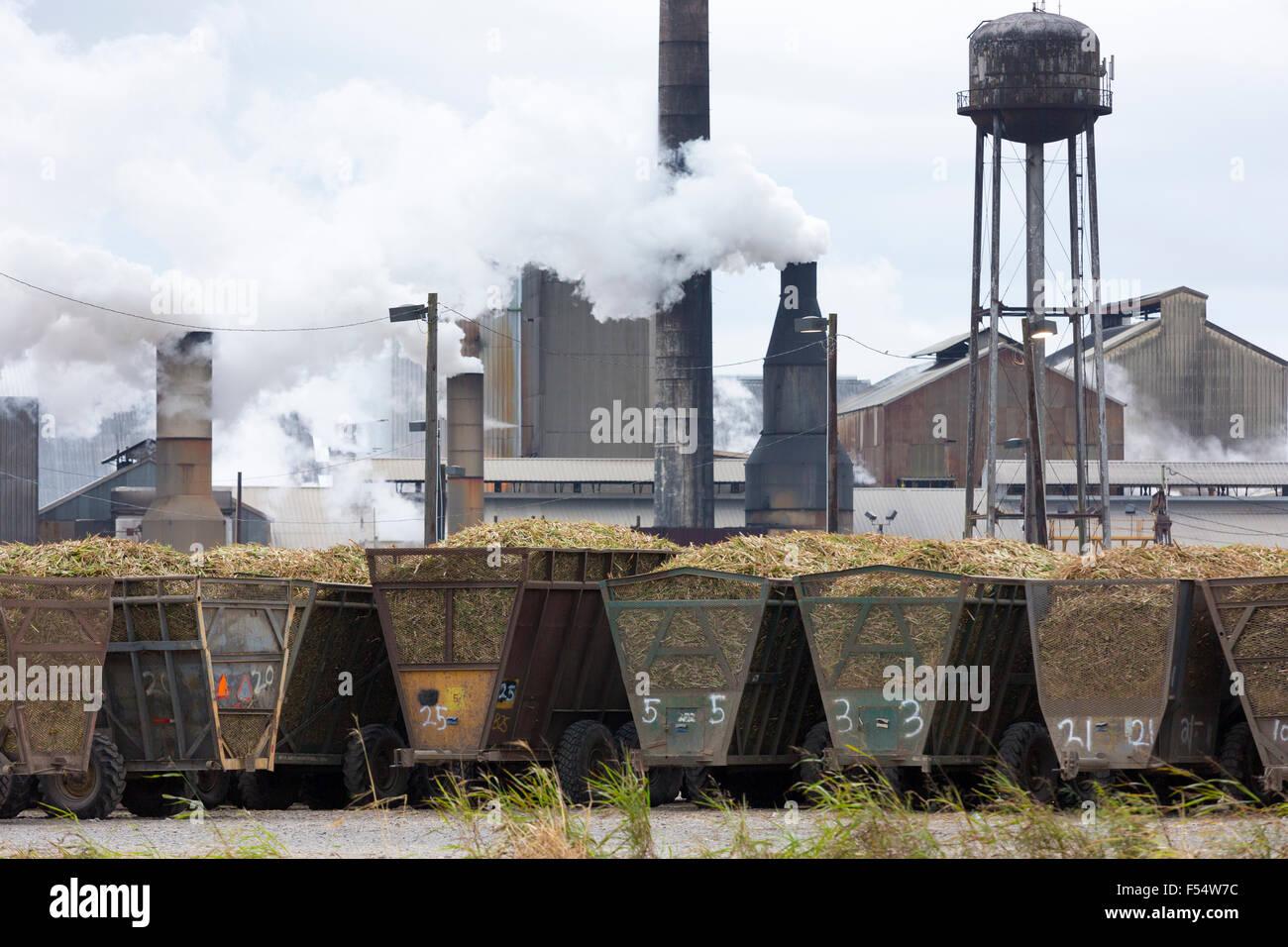 Sugarcane production factory St Mary Sugar Cooperative Sugar Mill processing raw sugar at Jeanerette, Louisiana, - Stock Image