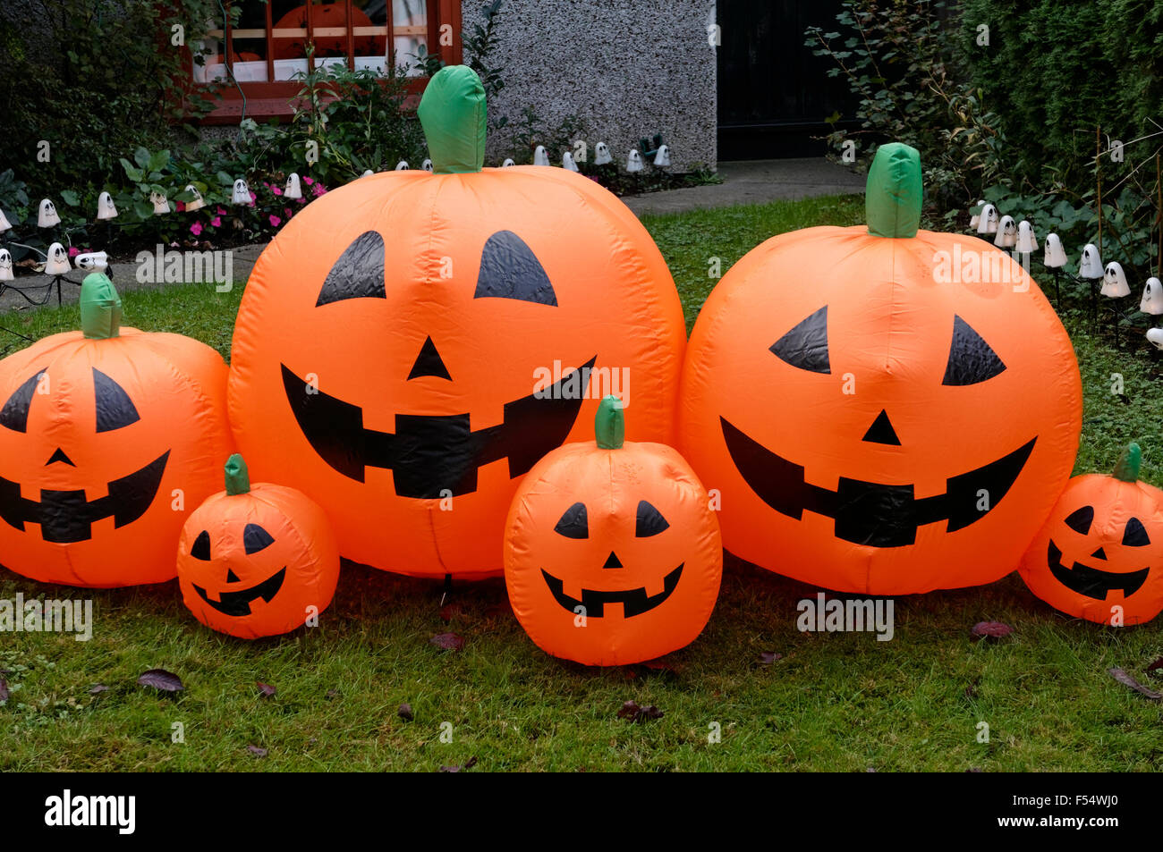 Inflatable plastic Halloween pumpkins on the front lawn of a house, Vancouver, BC, Canada - Stock Image