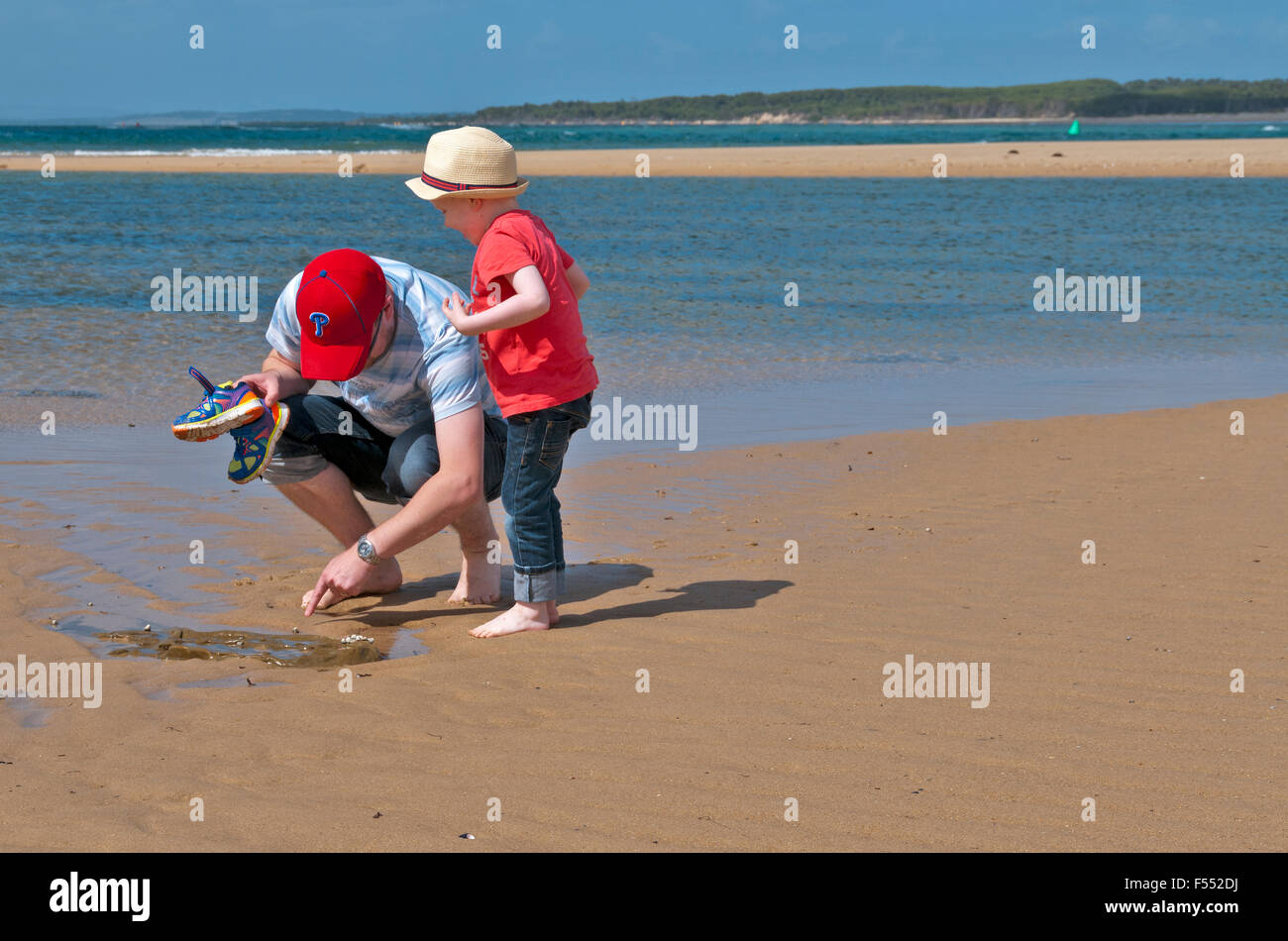Searching for sea creatures on the beach Anderson Inlet Inverloch Victoria Australia - Stock Image