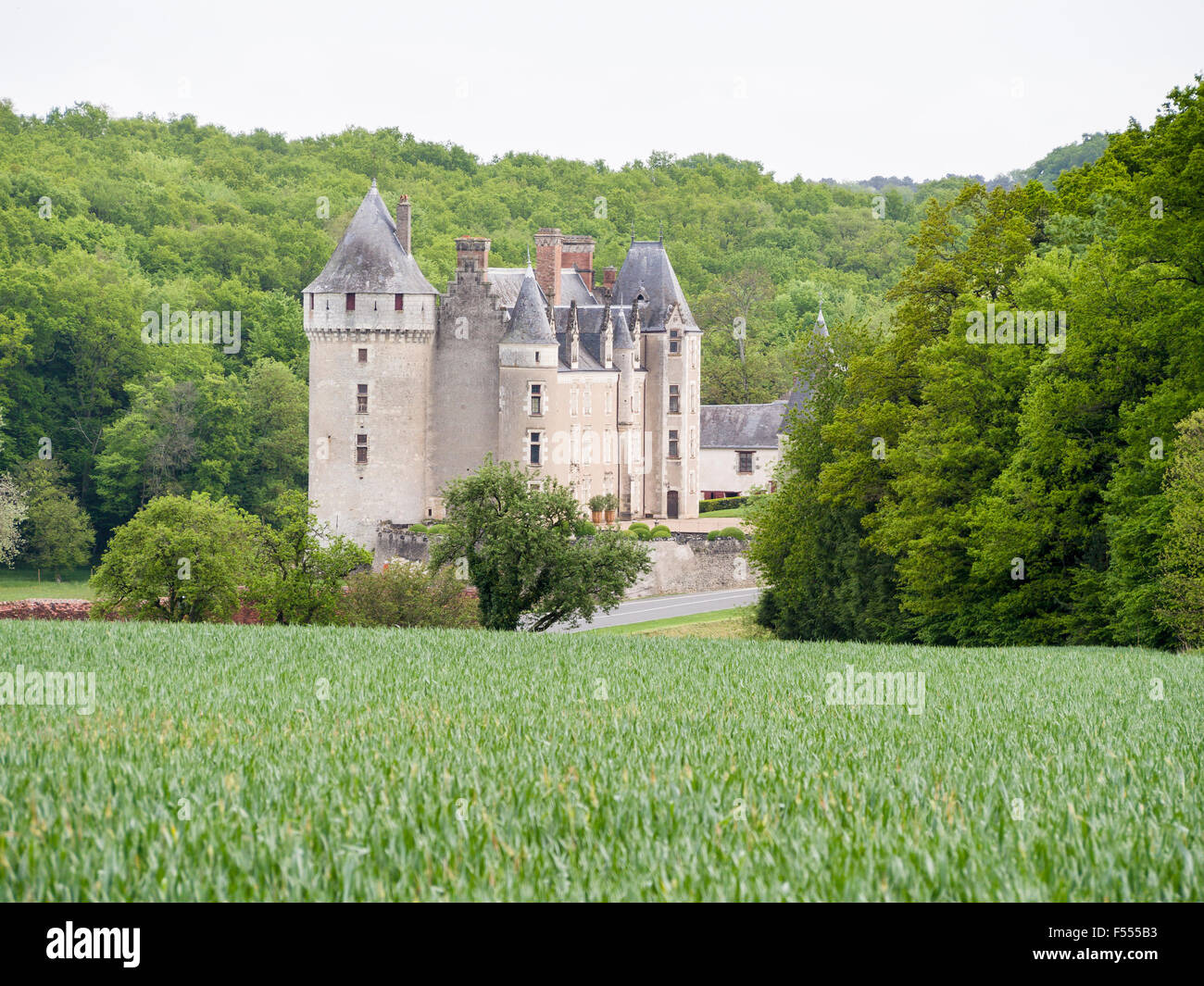 Chateau below a Wheat field. A green crop of wheat frames a view of Chateau de Montpoupon in the Loire countryside. - Stock Image