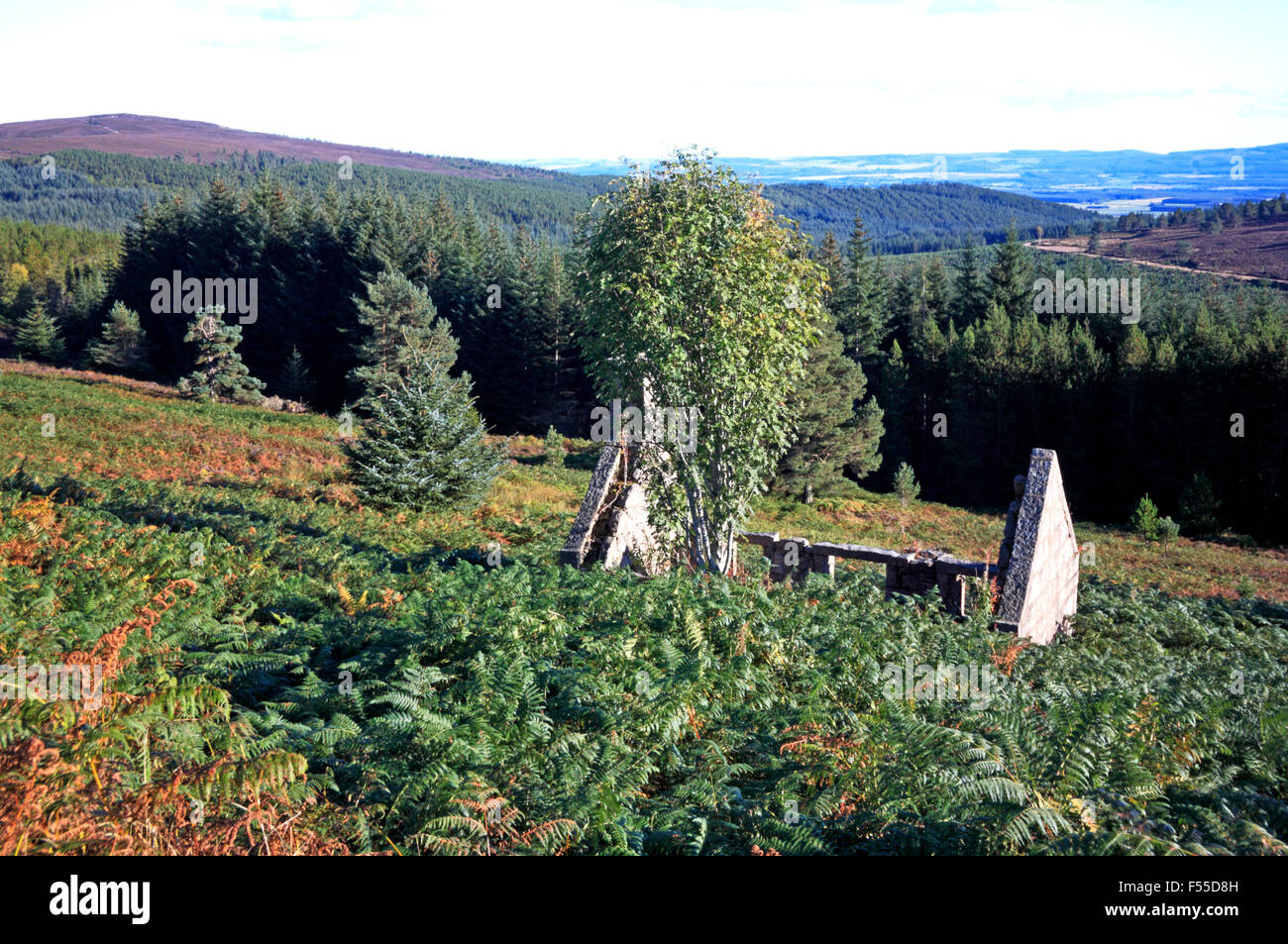 A ruined cottage on the upward slopes to the Hill of Fare near Banchory, Aberdeenshire, Scotland, United Kingdom. - Stock Image