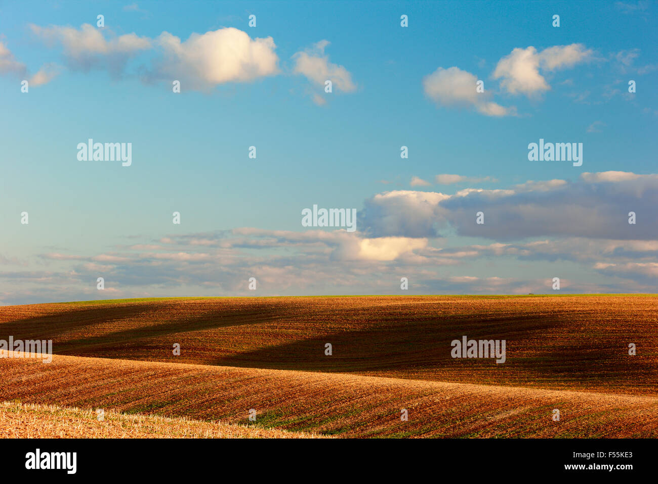 field, hills, the sky beautiful fluffy clouds - Stock Image