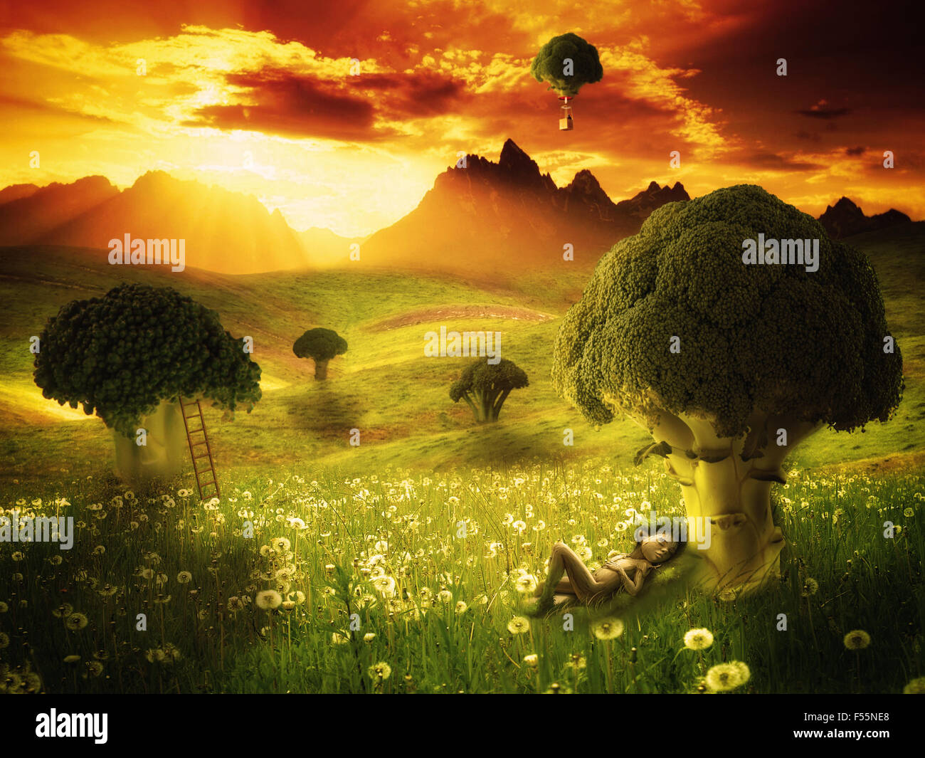 Fantasy broccoli land with elf sleeping - Stock Image
