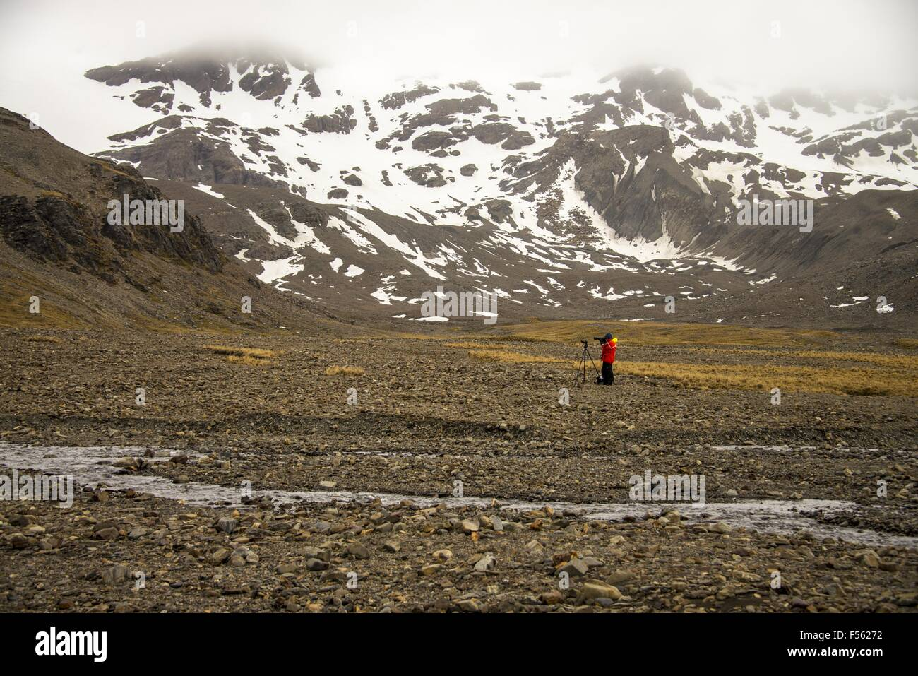 Photographer in South Georgia Island! - Stock Image