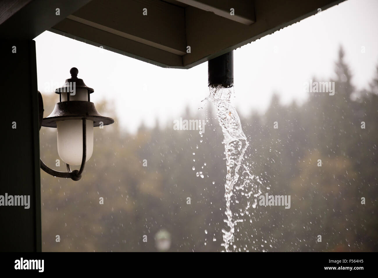 Rain comes down hard in this storm in Oregon, typical weather in the Fall or Autumn. - Stock Image
