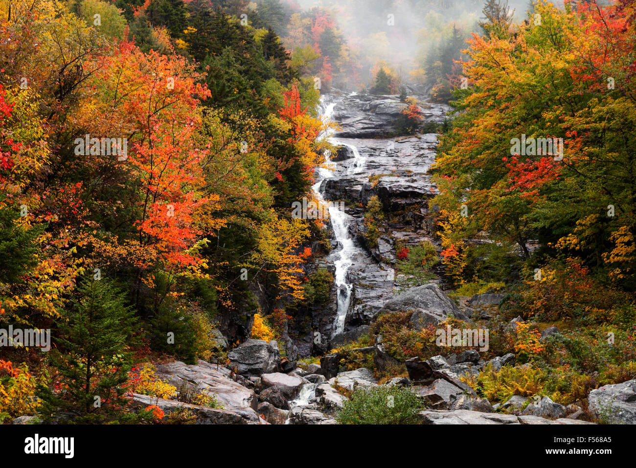 Silver Cascade waterfall, Crawford Notch State Park, White Mountains, New Hampshire New England USA Stock Photo