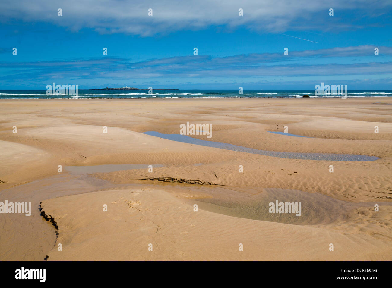 Farne Islands; from Seahouses Beach; Northumberland; UK - Stock Image