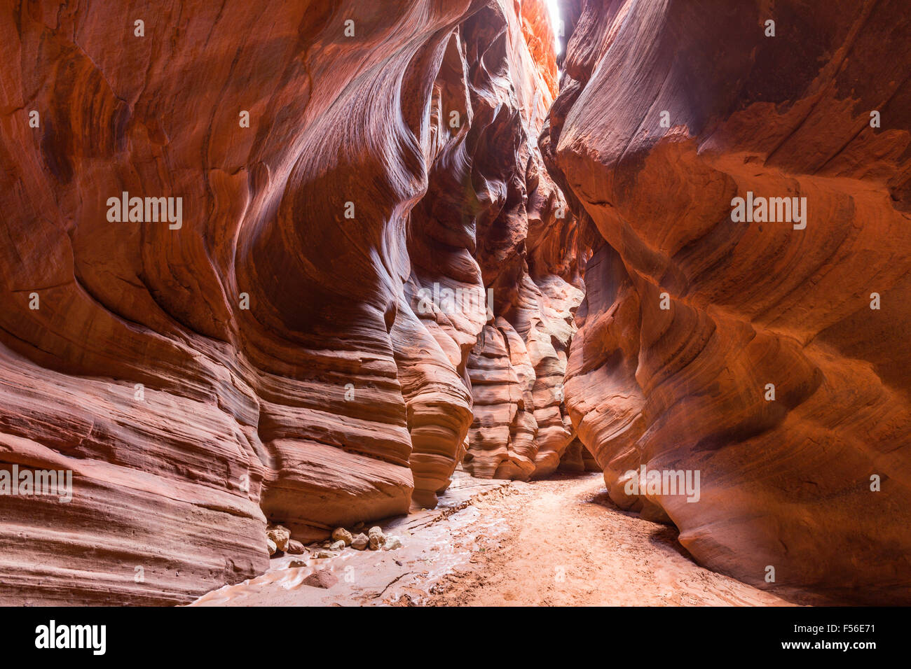 Narrow Wilderness Slot Canyon inside Buckskin Gulch in Southern Utah. Stock Photo