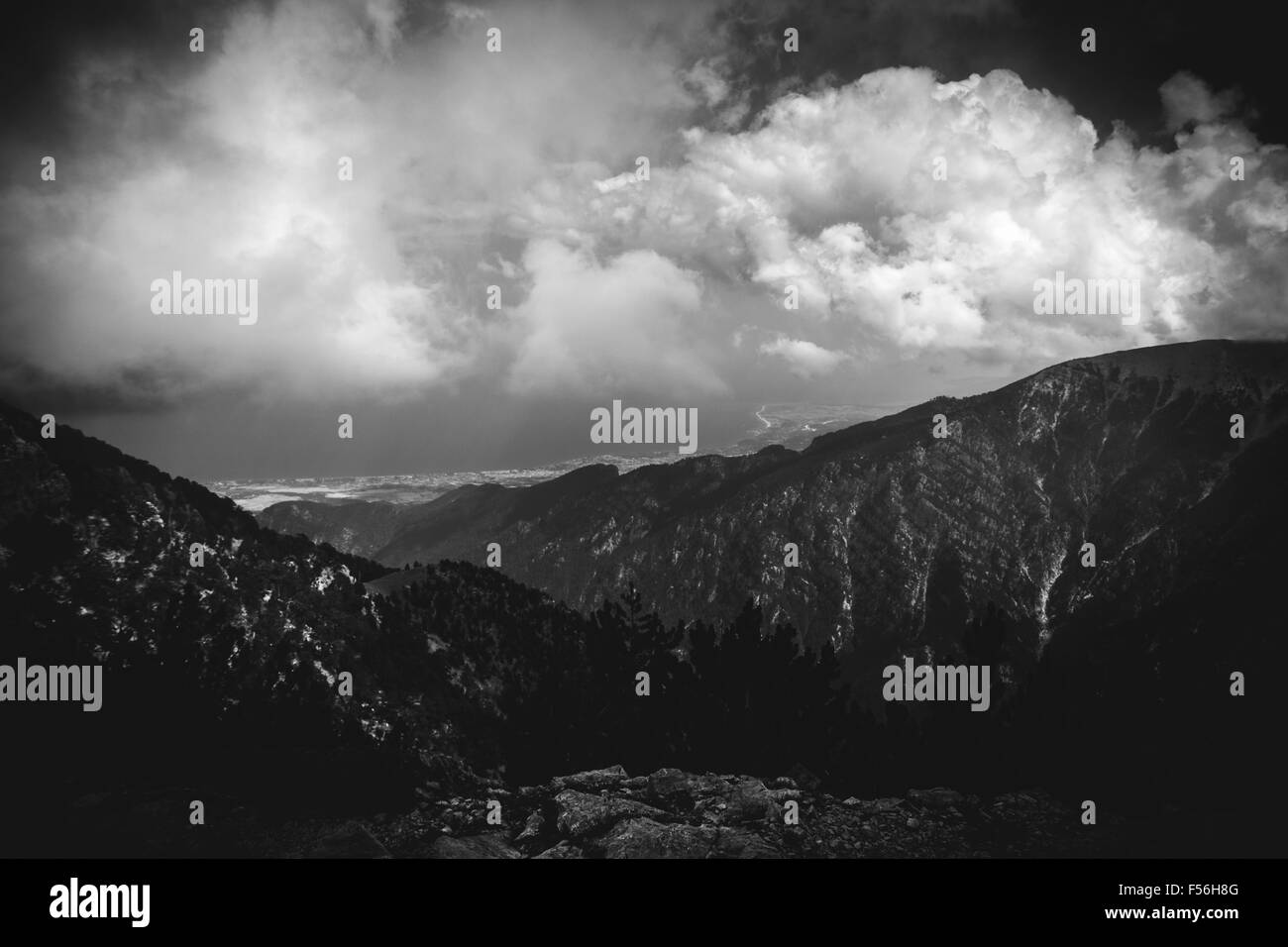 BW View - Stock Image