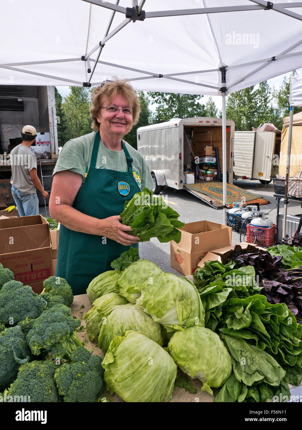 Vendor arranging vegetables at Anchorage Farmer's Market. - Stock Image
