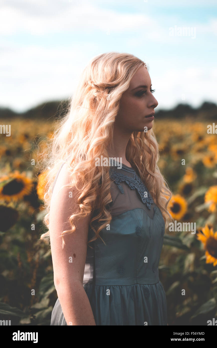 Beautiful young woman in a sunflower field at golden hour - Stock Image