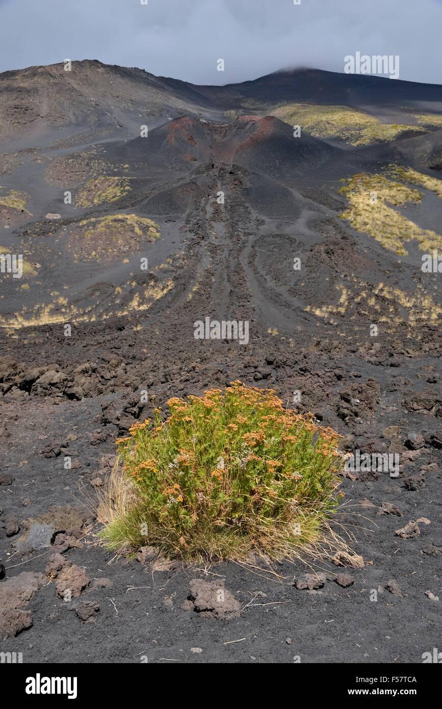 Side crater La Montagnola, Mount Etna, Sicily, Italy - Stock Image
