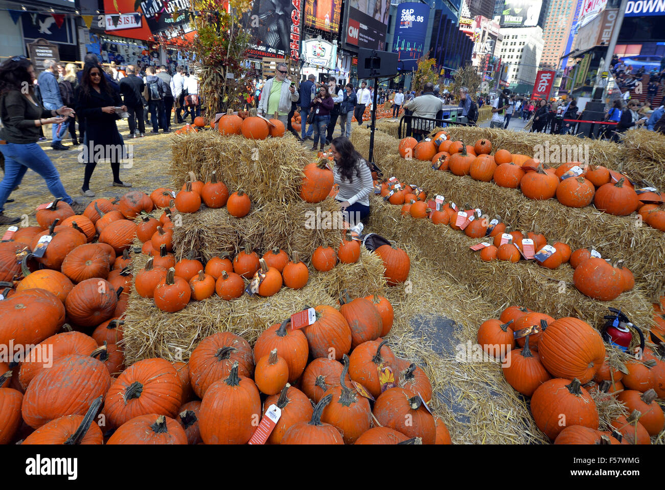 new york usa 29th oct 2015 a pop up pumpkin patch is set up for