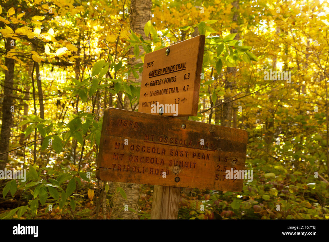 US walking trail sign, The White Mountain National Forest, New Hampshire USA - Stock Image