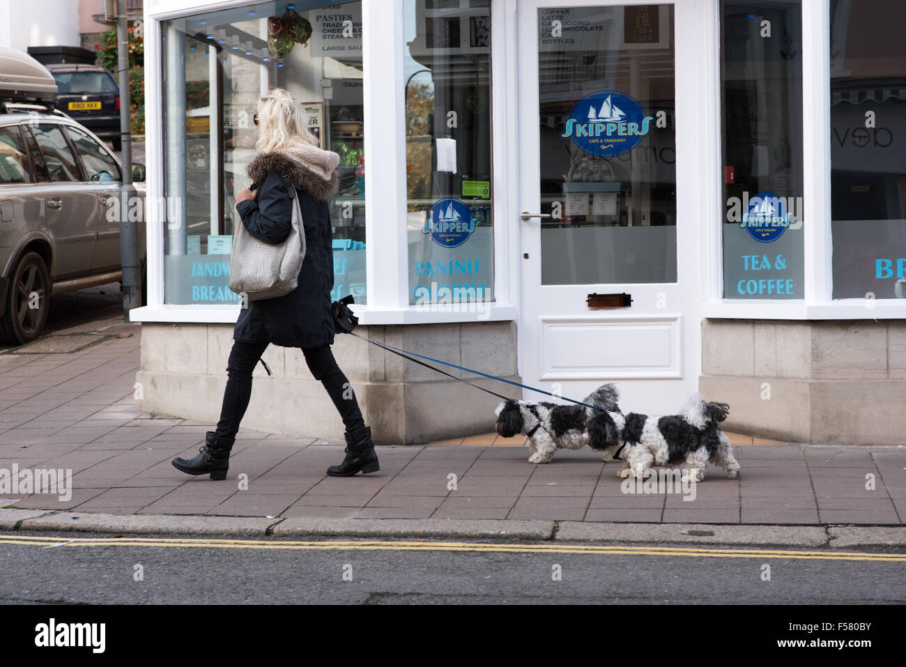 Blonde woman holding a large designer handbag striding along the street with her two precious dogs on leads walking - Stock Image