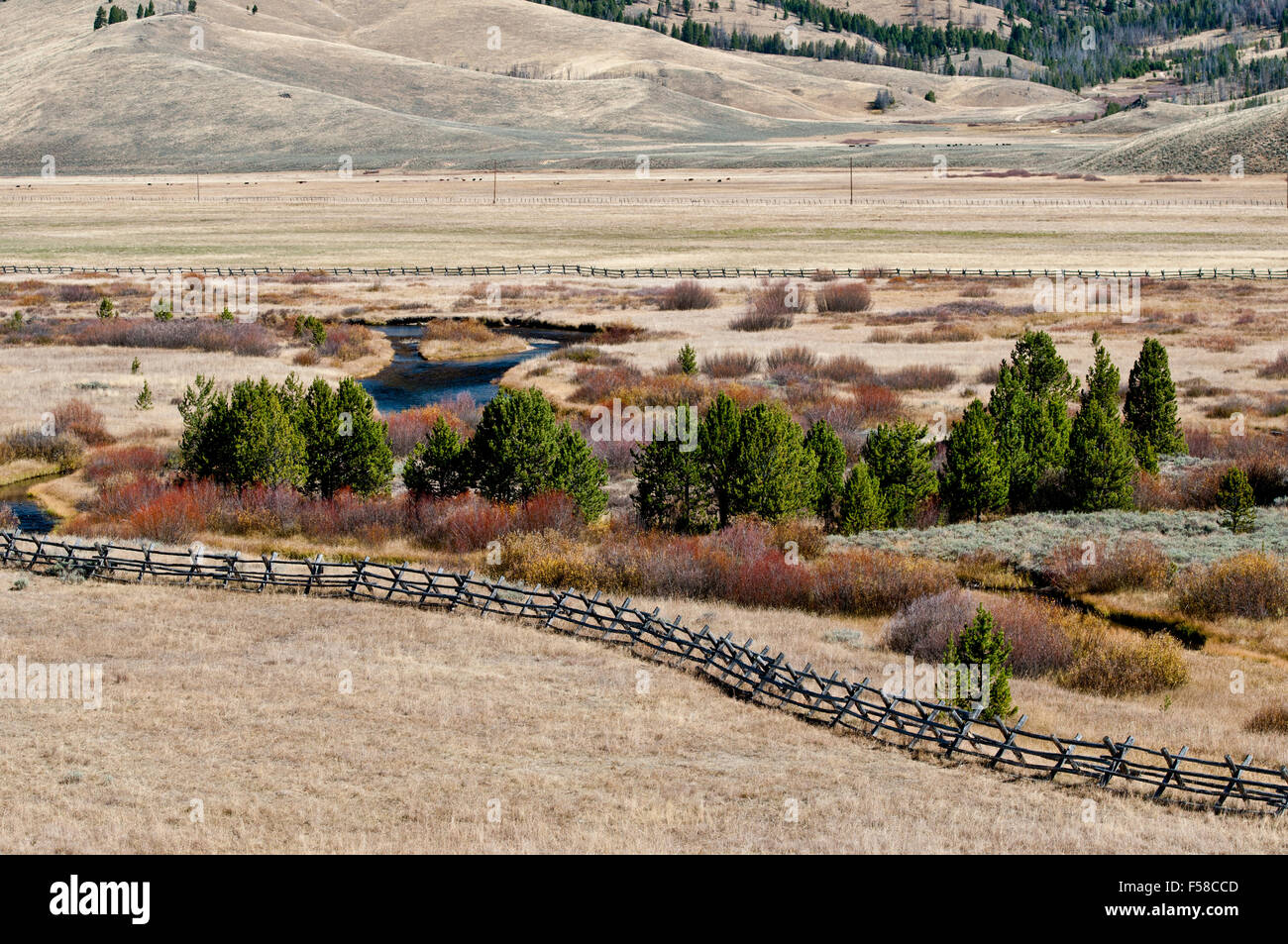 Valley Creek in the Sawtooth National Recreation Area, Idaho, fenced to protect and enhance riparian habitat. - Stock Image