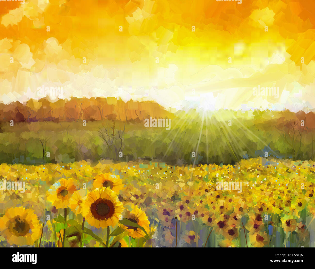 Sunflower flowers blossom. Oil painting of a rural sunset landscape with a golden sunflower field - Stock Image