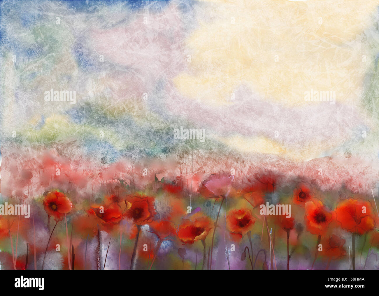 Watercolor Painting Poppy Flower Stock Photos Watercolor Painting