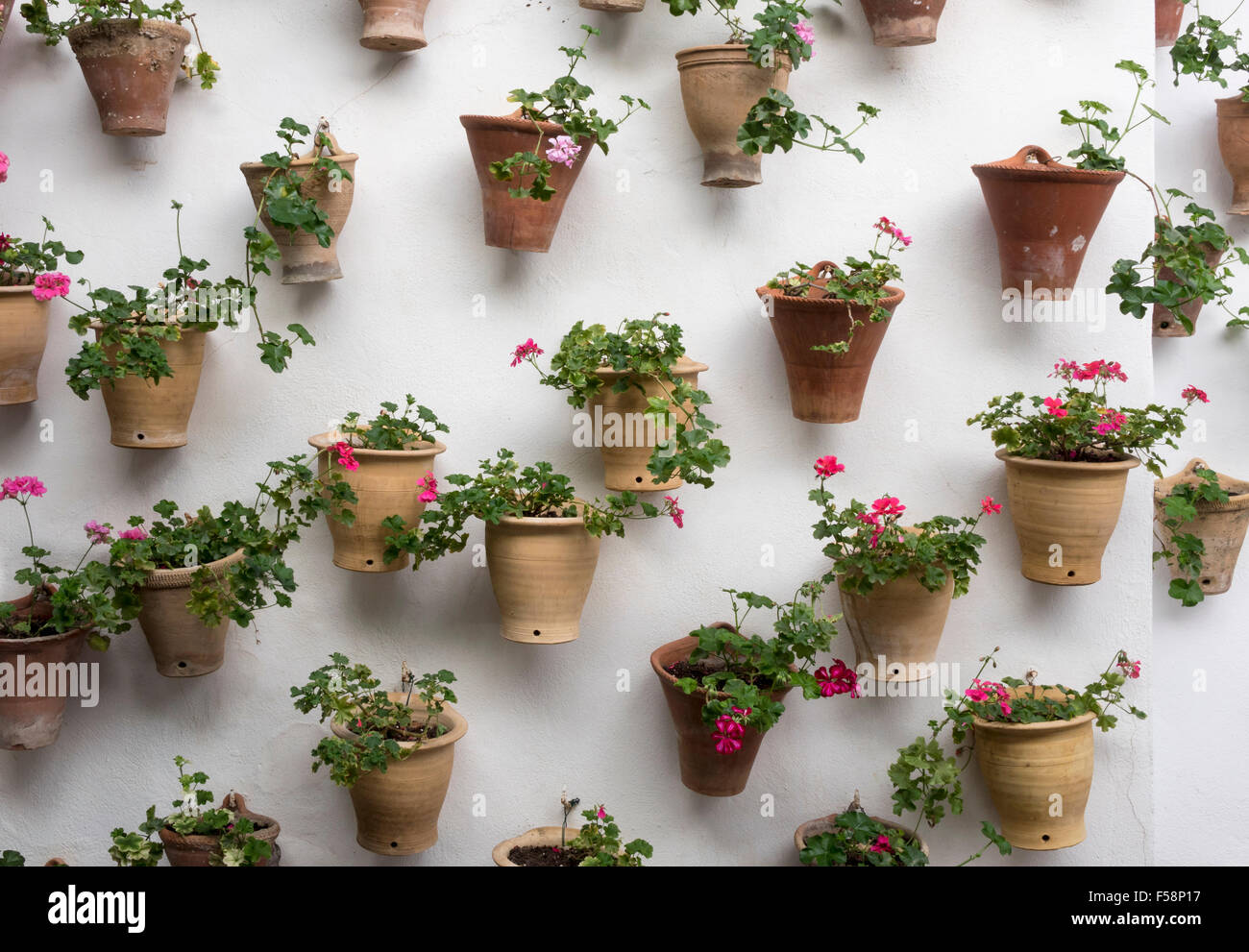 Courtyard garden, vertical gardening - flowers in plant pots attached to a white wall - Stock Image