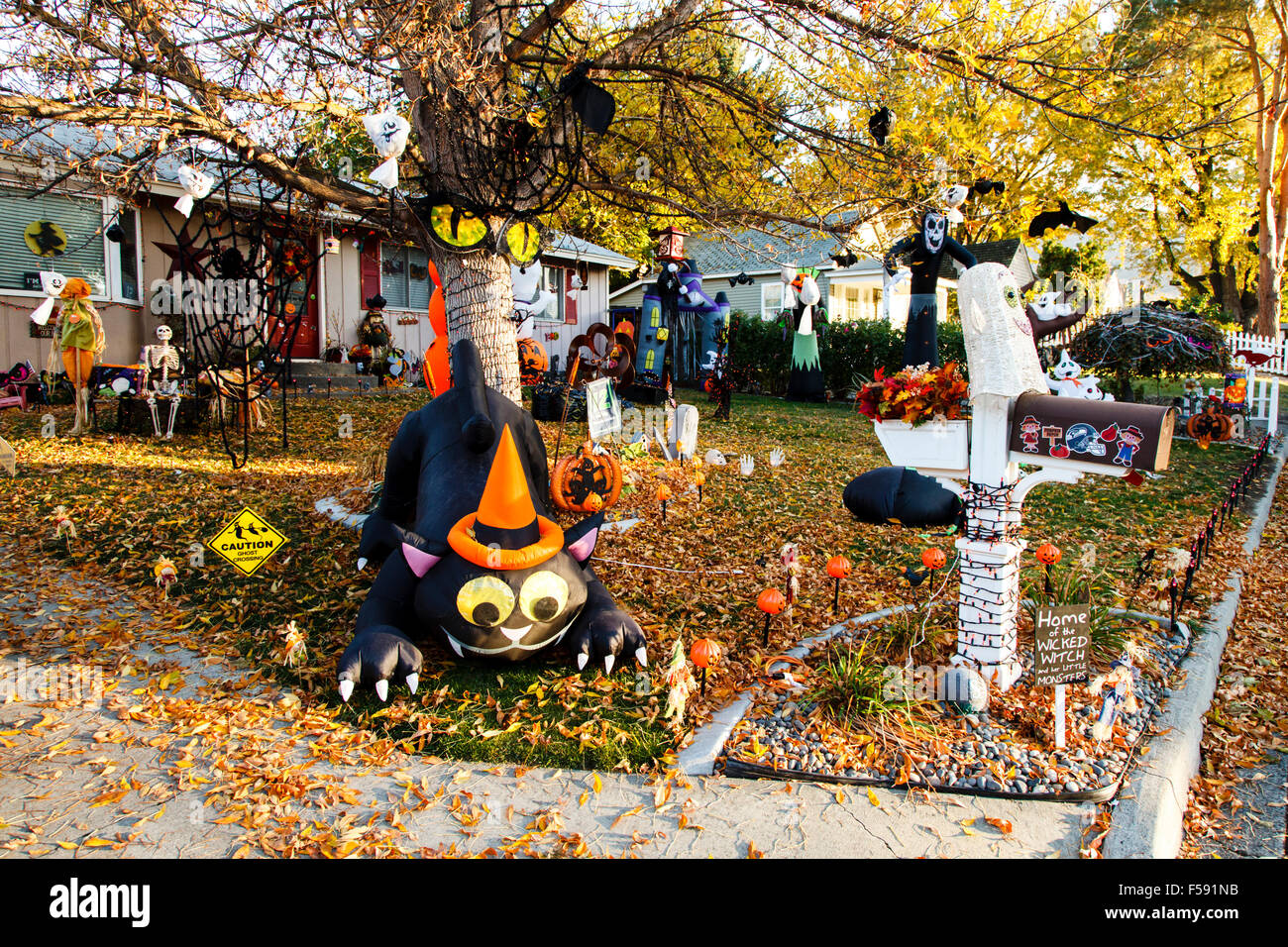 High Quality Getting Ready For Halloween, Prosser WA USA