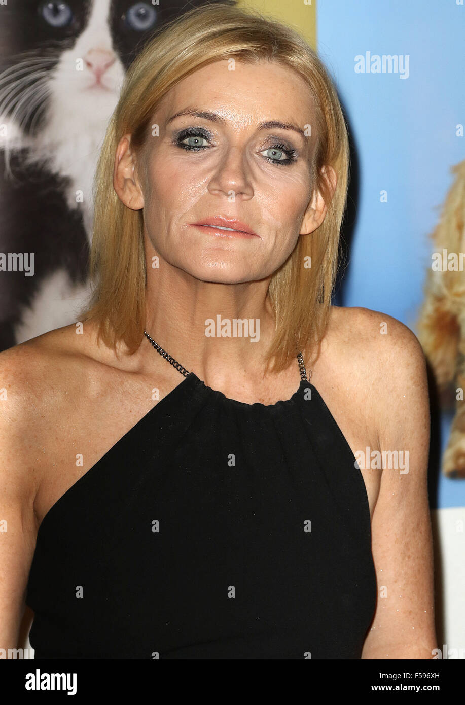 October 21, 2015 - Michelle Collins attending the 'Daily Mirror & RSPCA Animal Hero Awards 2015' at - Stock Image
