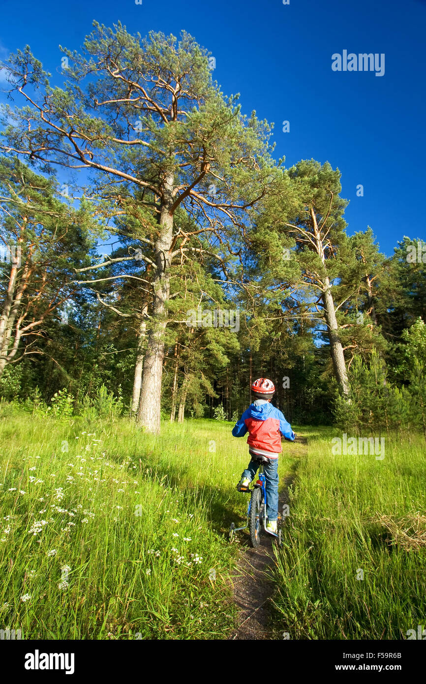Boy on bike in the forest - Stock Image