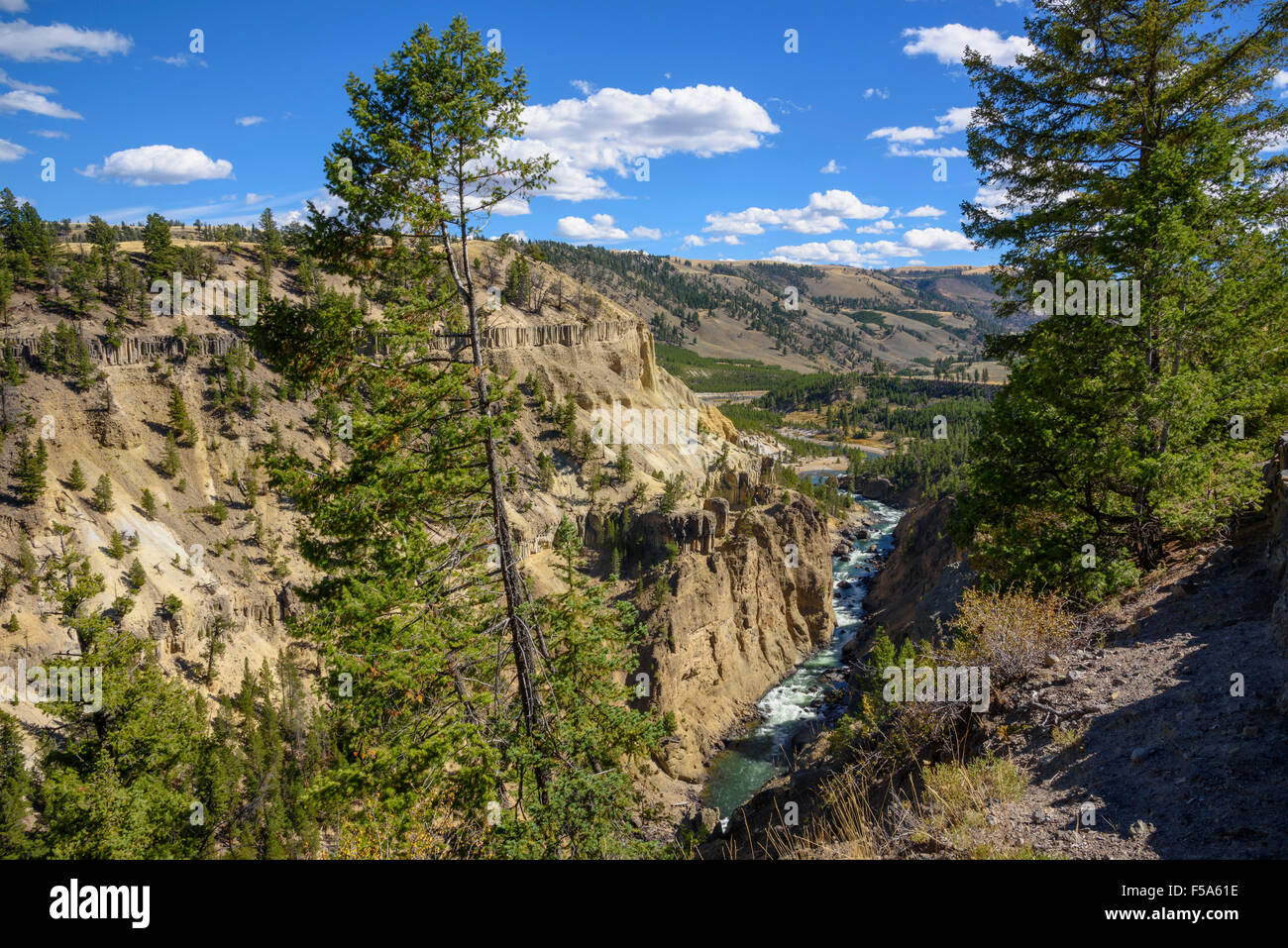 The Narrows, Yellowstone River, Yellowstone National Park, Wyoming, USA - Stock Image