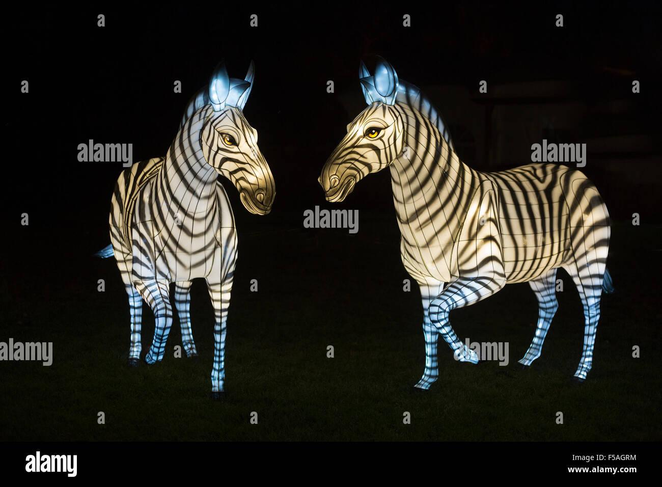 Zebra lanterns at the Illuminasia Lantern Festival, handmade by Chinese artisans,  powered by energy efficient LED - Stock Image