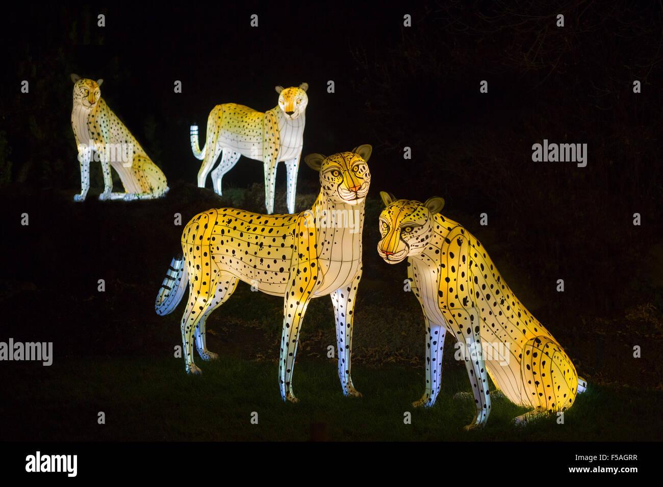 Cheetah lanterns at the Illuminasia Lantern Festival, handmade by Chinese artisans,  powered by energy efficient - Stock Image