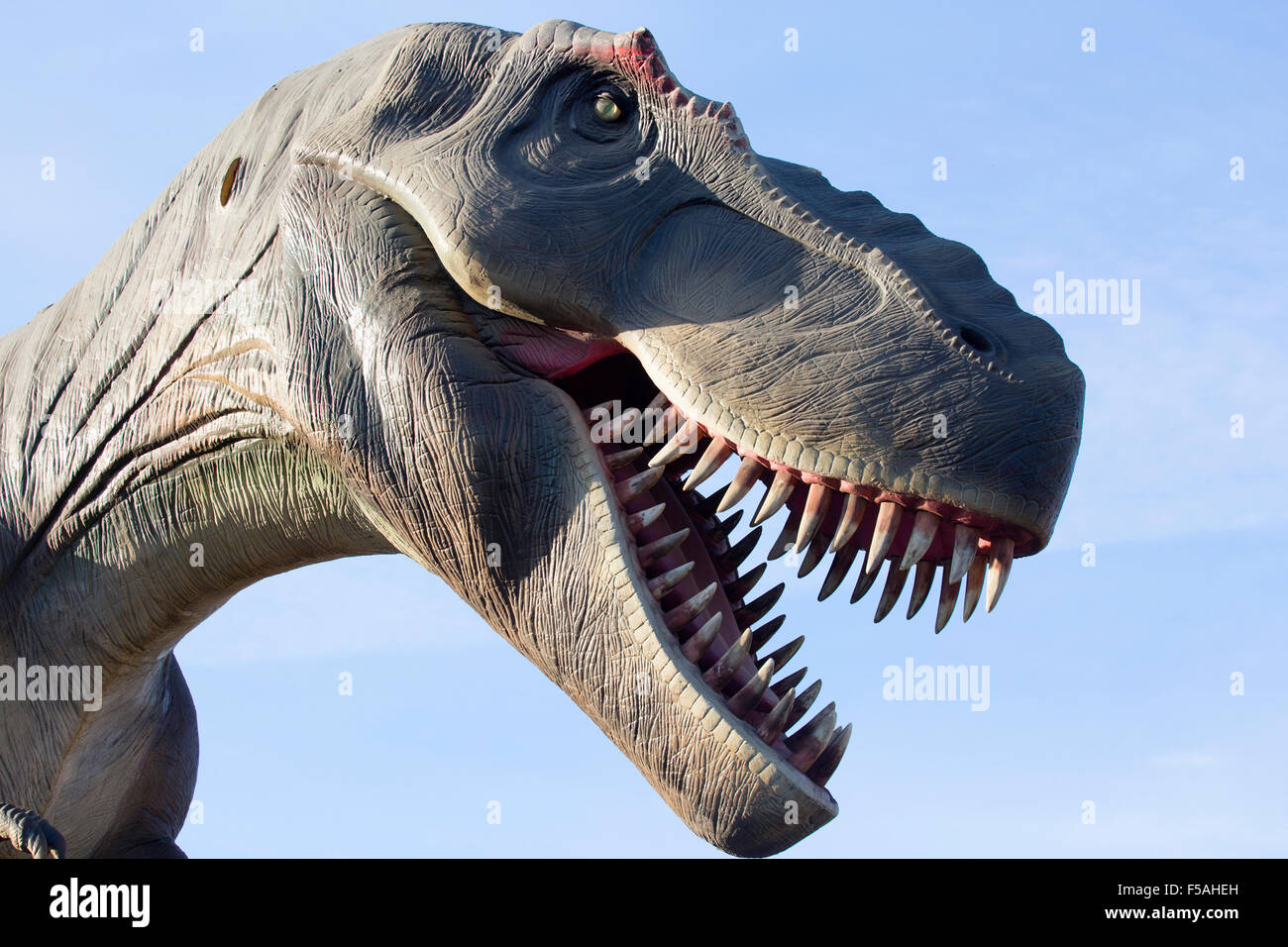 Allosaurus dinosaur model at the Calgary Zoo prehistoric park - Stock Image