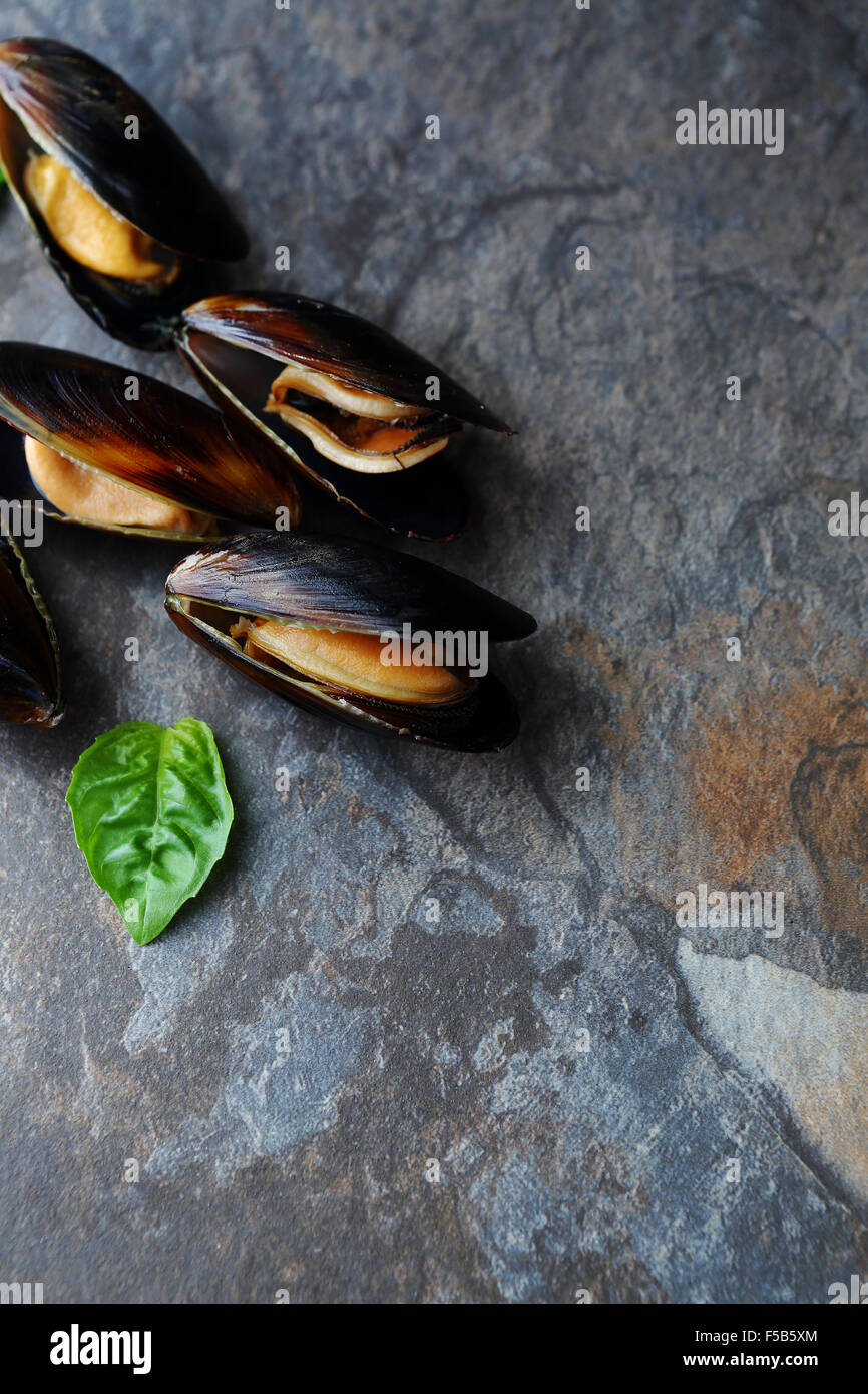 cooked mussels with shells top view - Stock Image