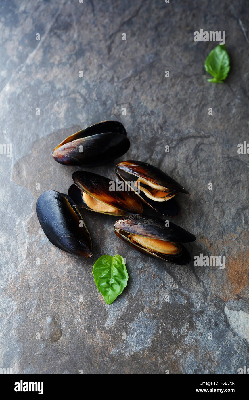 fresh cooked mussels with shells, top view - Stock Image