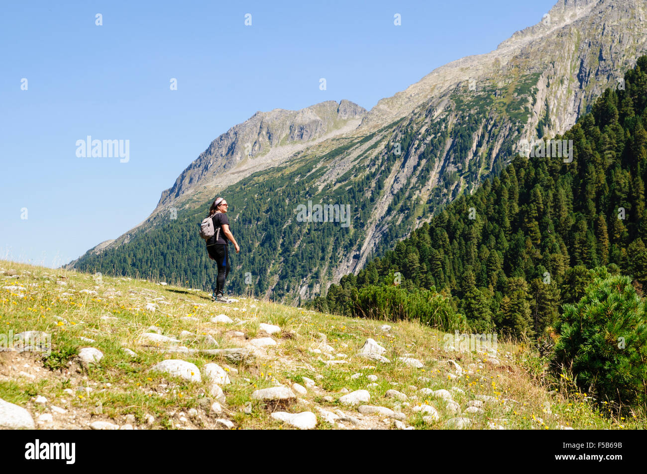Female hiker in Zillertal alps, Tirol, Austria Model release available Stock Photo