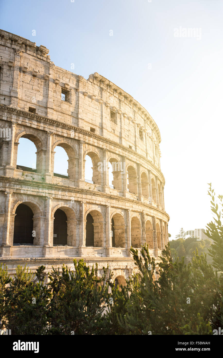 Colosseum in Rome, Italy - Stock Image