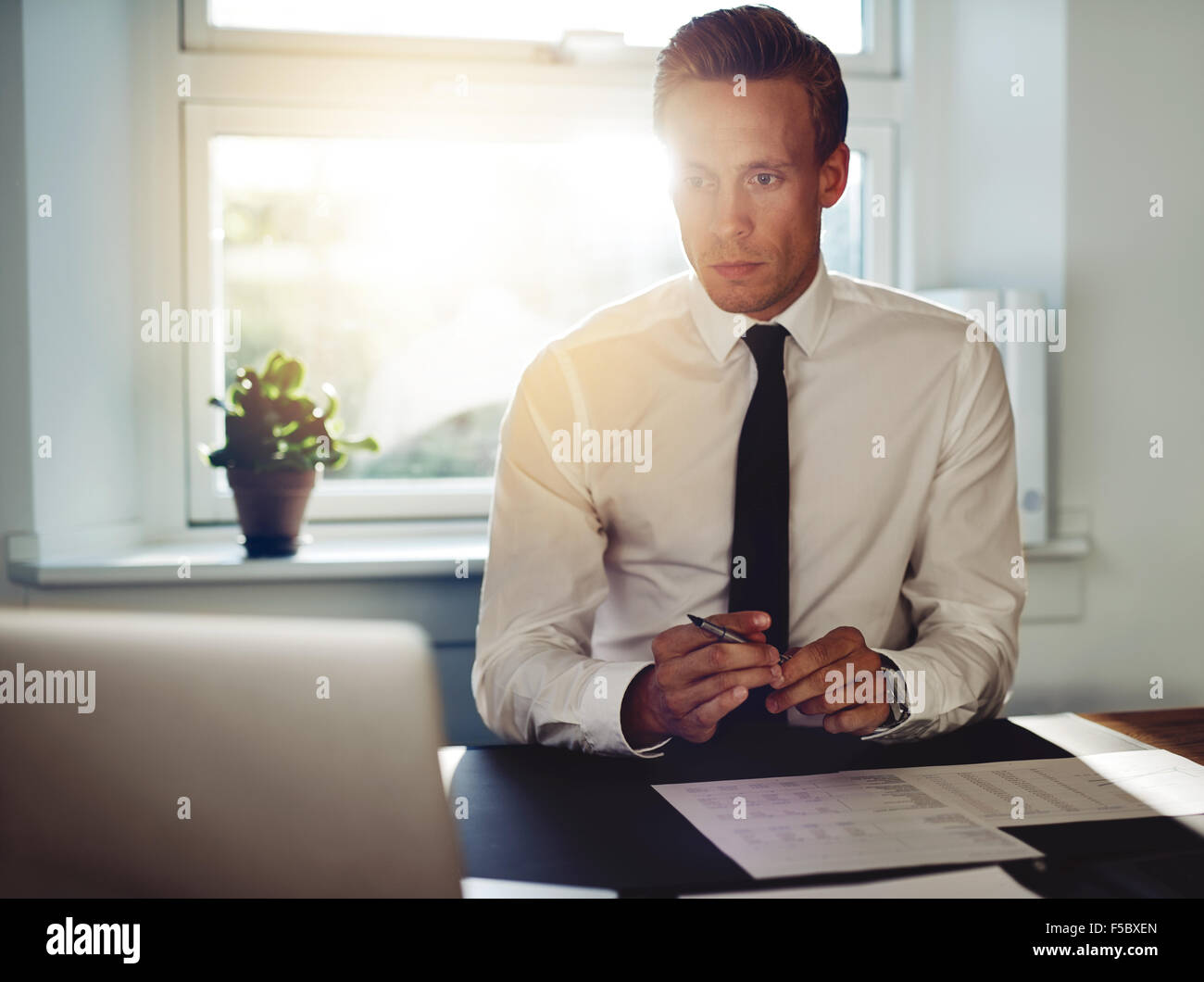 Professional business man at office working at his desk, holding a pen and looking at his laptop - Stock Image