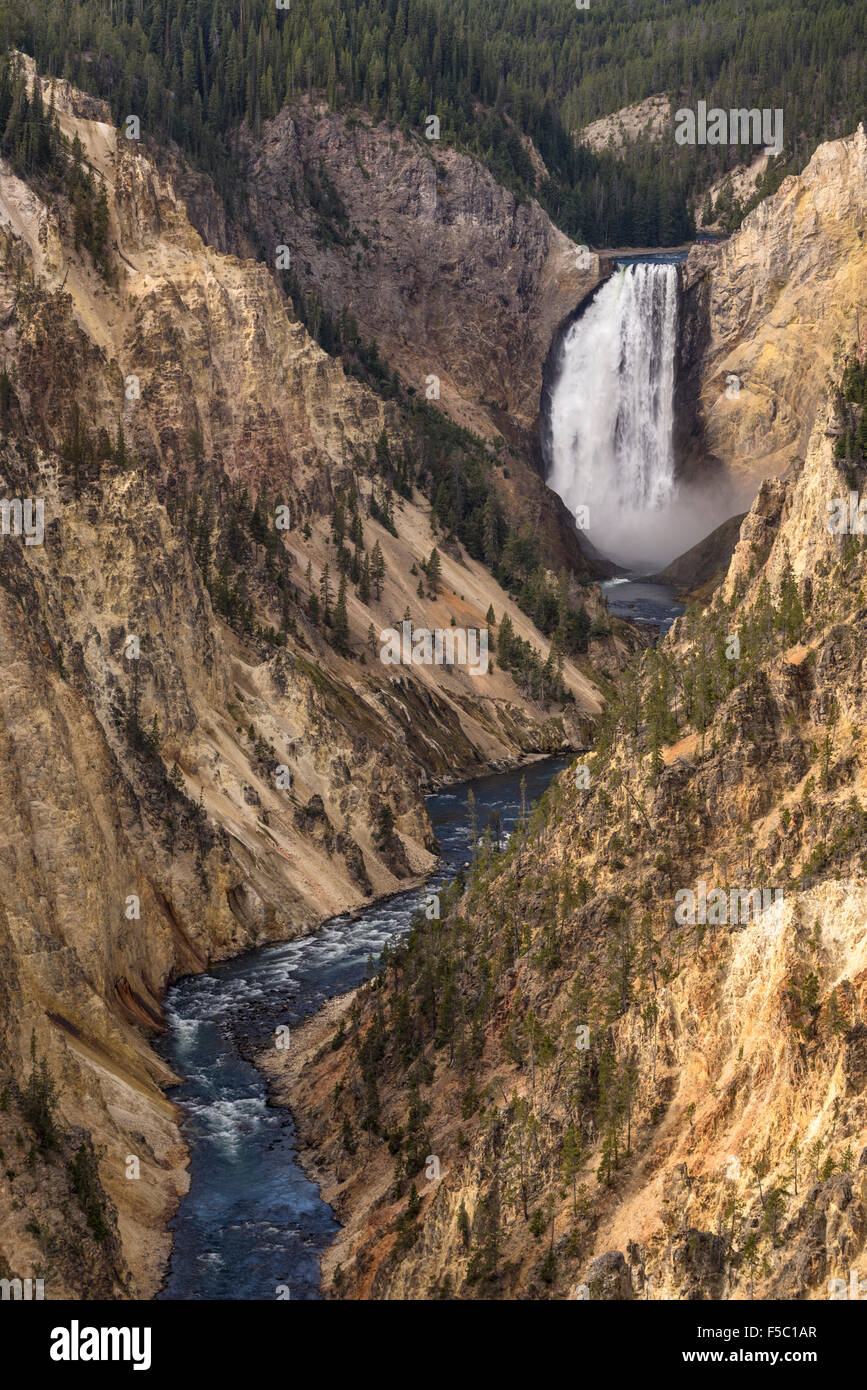 Lower Falls of the Yellowstone River and the Grand Canyon of the Yellowstone from Artist Point; Yellowstone National - Stock Image