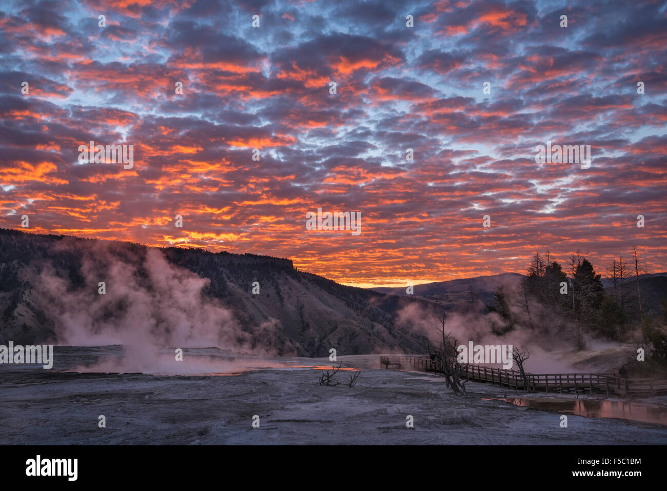 Sunrise clouds over Upper Mammoth Terrace, Yellowstone National Park, Wyoming. - Stock Image