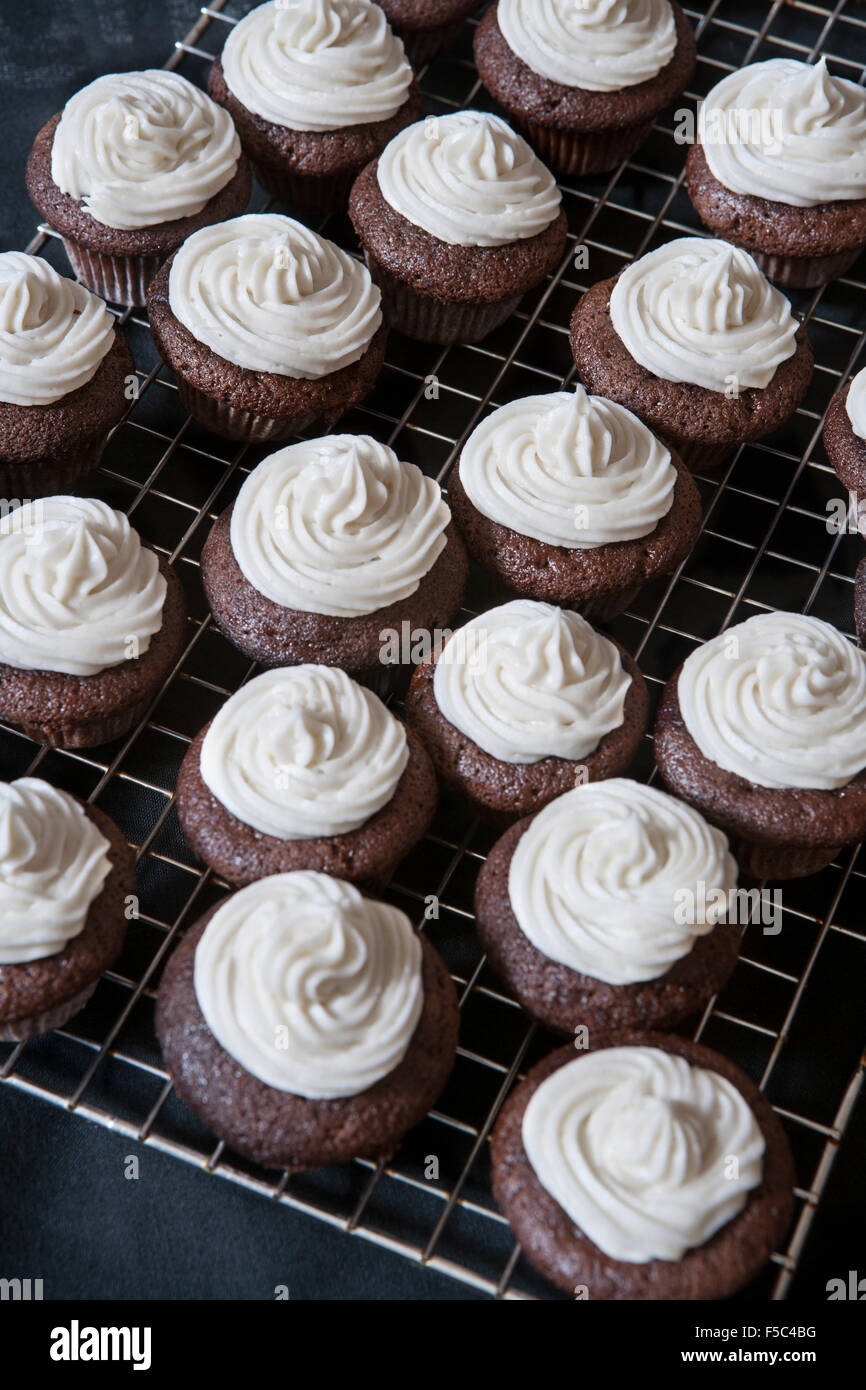 Mini Chocolate Cupcakes with Vanilla Buttercream Frosting on Cooling Rack - Stock Image