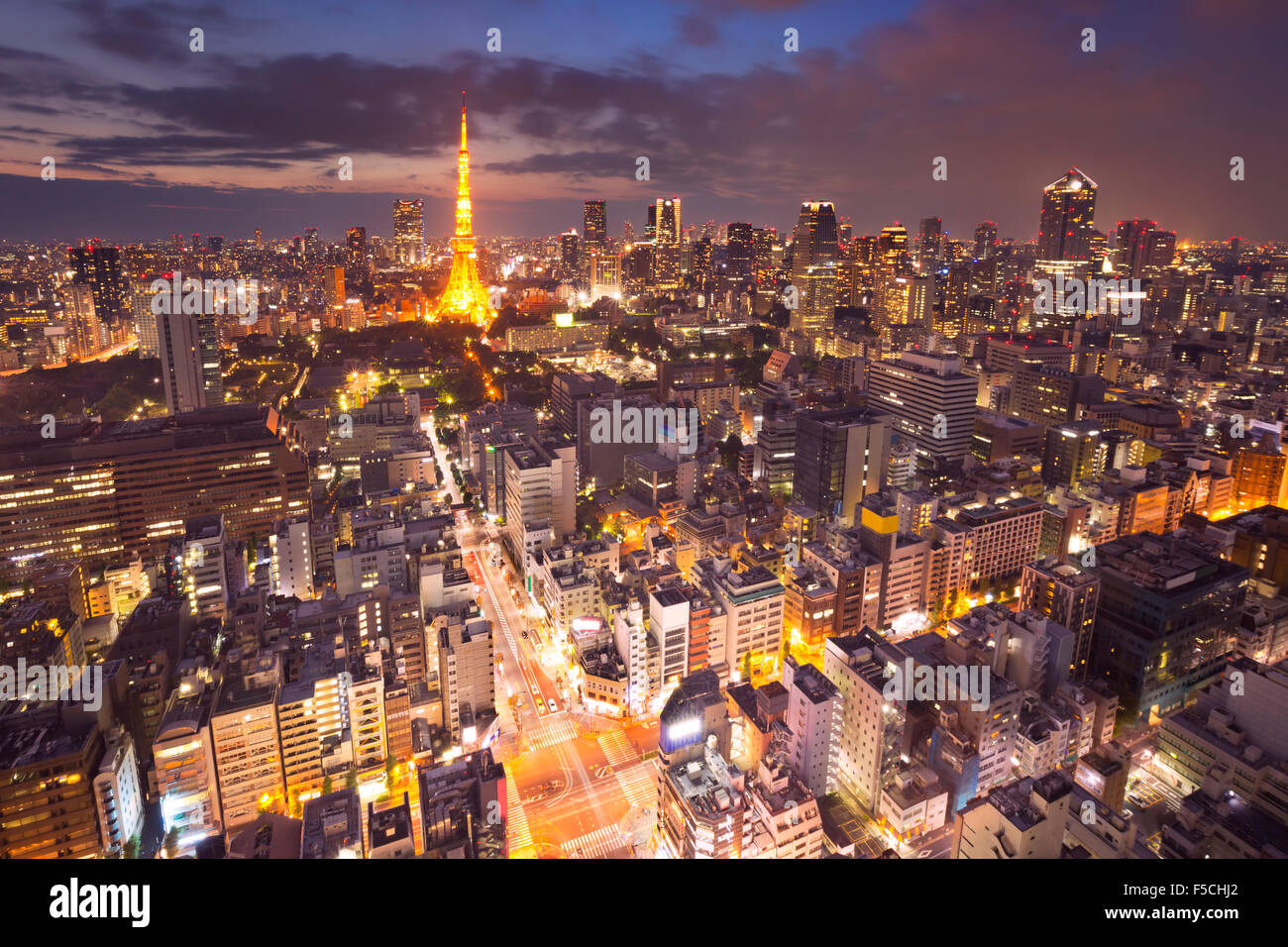 The skyline of Tokyo, Japan with the Tokyo Tower photographed at dusk. - Stock Image